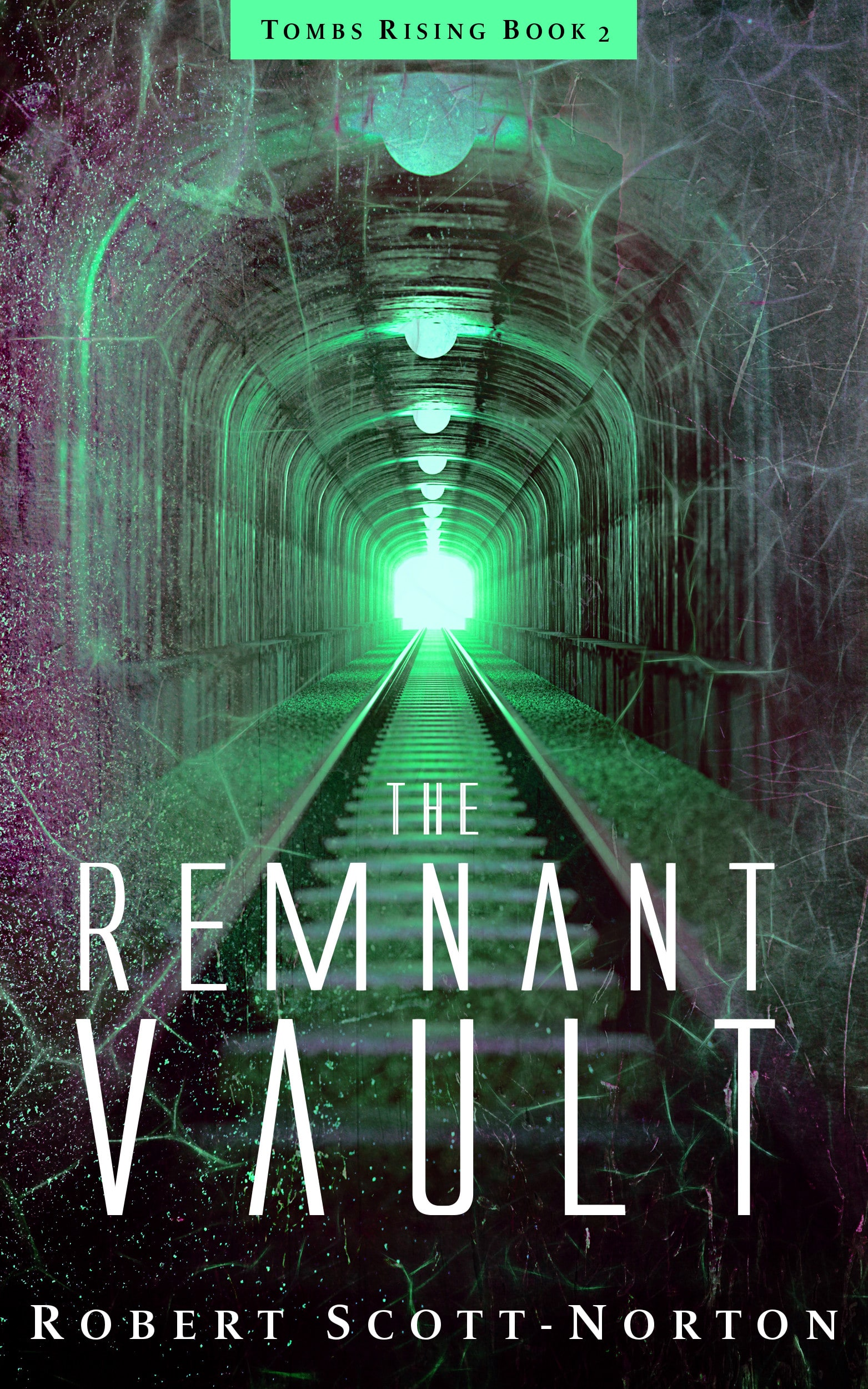 The Remnant Vault Book Cover